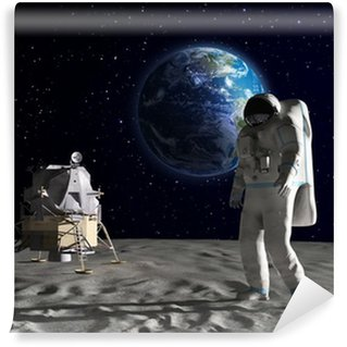 Astronaut on the Moon Wall Mural - Vinyl