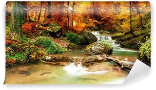 Autumn creek woods with yellow trees Wall Mural - Vinyl
