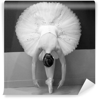 Vinyl Wall Mural Ballet Dancer