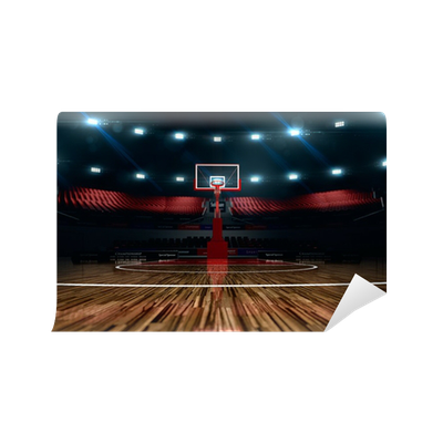 Basketball court sport arena wall mural pixers we for Basketball court mural