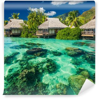 Beautiful above and underwater landscape of a tropical resort Wall Mural - Vinyl