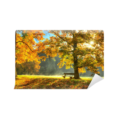 Beautiful autumn tree with fallen dry leaves wall mural for Autumn tree mural