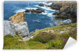 beautiful coastal cliffs in Brittany France Wall Mural - Vinyl