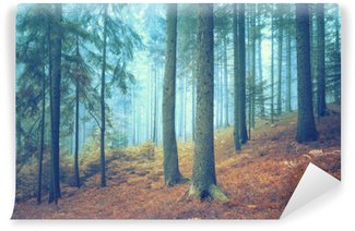 Beautiful dreamy conifer forest. Color filter effect used. Wall Mural - Vinyl