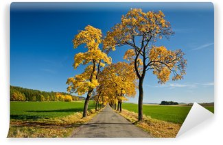 Wall Mural - Vinyl Beautiful golden autumn alley