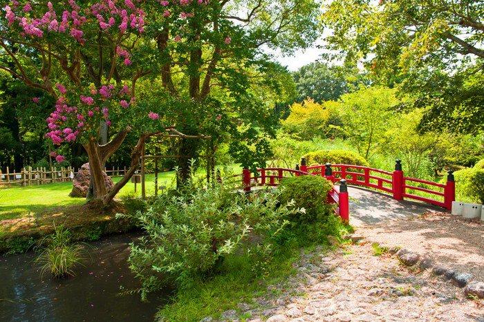 Wall Mural   Vinyl Beautiful Japanese Garden   Asia