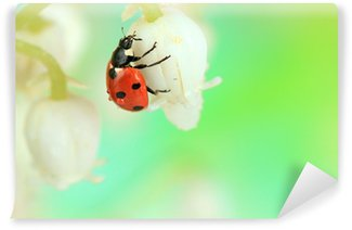 Beautiful ladybird on lily of the valley Wall Mural - Vinyl