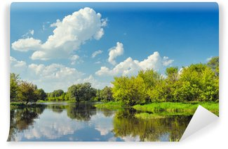 beautiful landscape wallpaper with flood waters of narew river wall mural vinyl