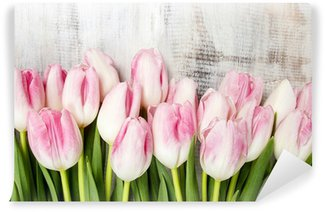 Beautiful pink and white tulips on wooden background. Copy space