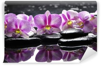 Beautiful pink orchid with black stones reflection Wall Mural - Vinyl