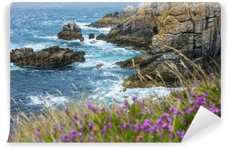 beautiful rocky coastline and sea - Brittany, France Wall Mural - Vinyl