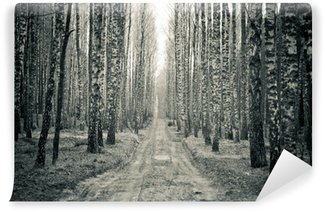 Vinyl Wall Mural Birch black and white forest