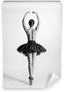 Vinyl Wall Mural Black and white trace of a topless ballet dancer