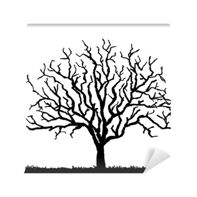 Black tree silhouette with no leaves vector illustration for Black tree mural