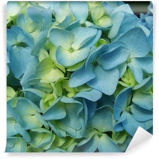 Blue Hydrangea flower Wall Mural - Vinyl