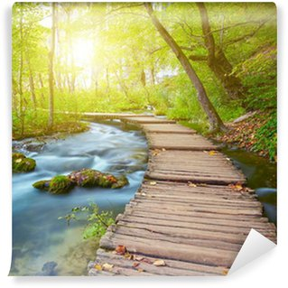 Boardwalk in the park Wall Mural - Vinyl