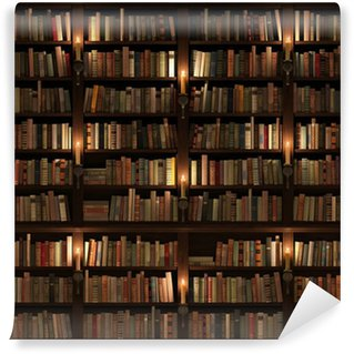 Bookcases wall murals pixers for Bookcase wall mural