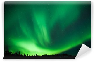 Boreal forest taiga Northern Lights substorm swirl Wall Mural - Vinyl