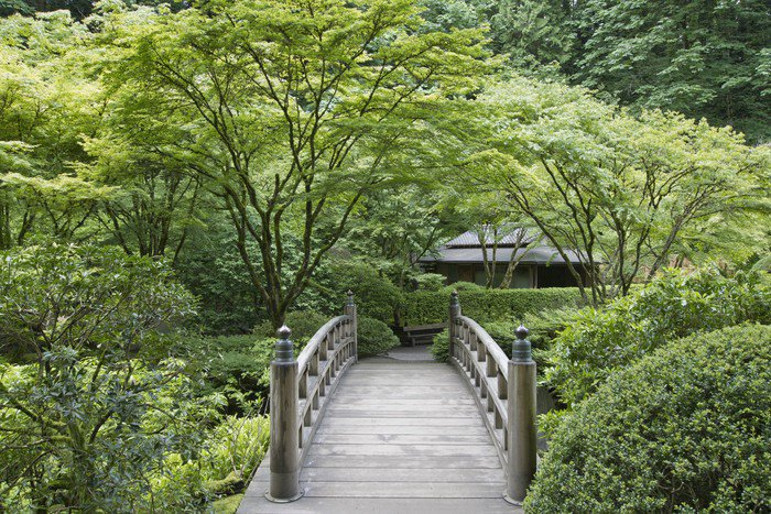 Wall Mural   Vinyl Bridge At Japanese Garden   Urban
