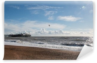 Vinyl Wall Mural Brighton Pier and Clouds