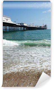 Vinyl Wall Mural Brighton Pier