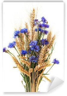 Bunch of cornflowers and ears isolated on white background