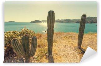 Cactus in Mexico Wall Mural - Vinyl