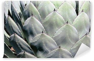 cactus Wall Mural - Vinyl
