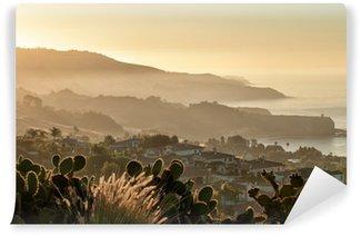 California coast south of Palos Verdes, Los Angeles Wall Mural - Vinyl