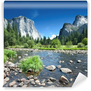 California - Yosemite National Park Wall Mural - Vinyl
