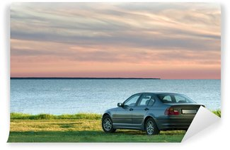 car and sea landscape Wall Mural - Vinyl