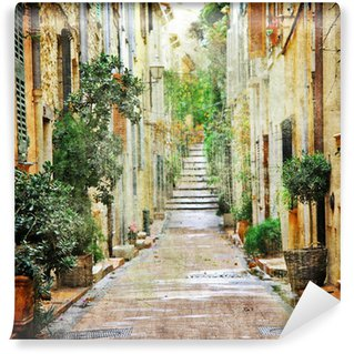 Vinyl Wall Mural charming streets of mediterranian, artistic picture