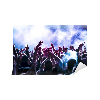 Cheering crowd at concert wall mural pixers we live for Concert wall mural