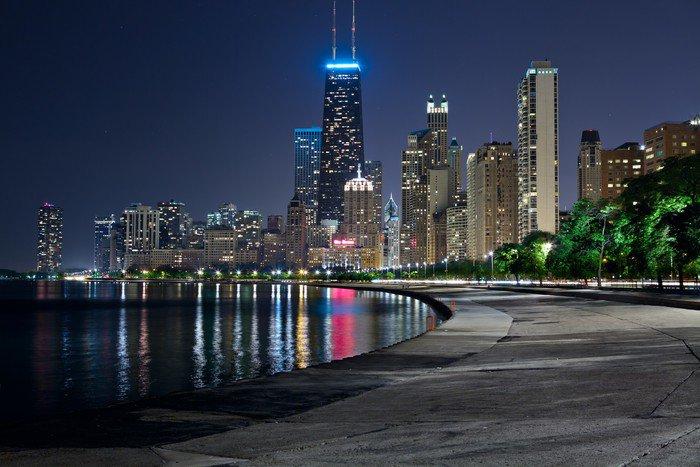Elegant Wall Mural   Vinyl Chicago Skyline.   Themes Part 26