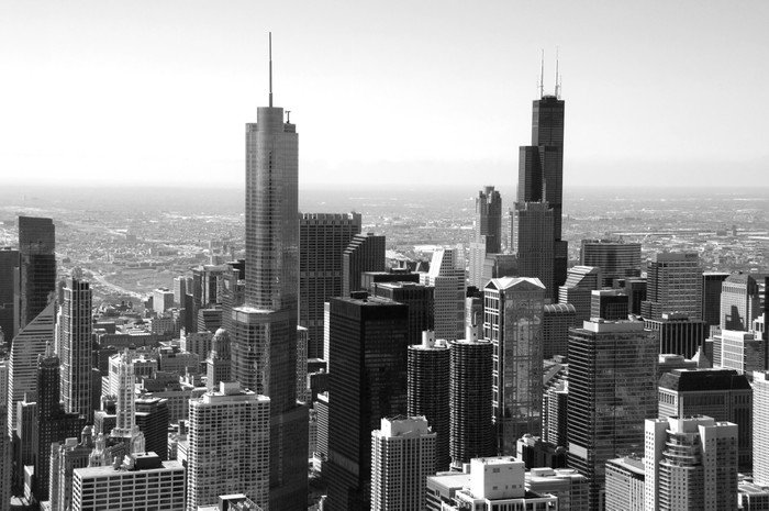 Wall Mural   Vinyl Chicago Skyline   Themes Part 34