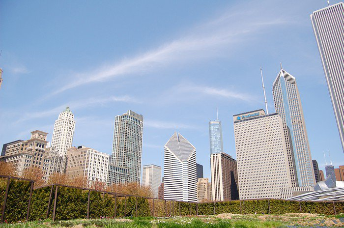 Wall Mural   Vinyl Chicago Skyline   Urban Part 48
