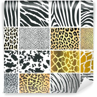 Collection of 16 vector skin animal texture Wall Mural - Vinyl