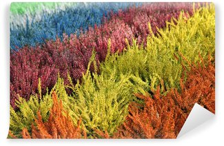 Colorful heathers Wall Mural - Vinyl