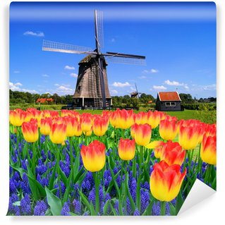 Colorful spring flowers with classic windmill, Netherlands Wall Mural - Vinyl