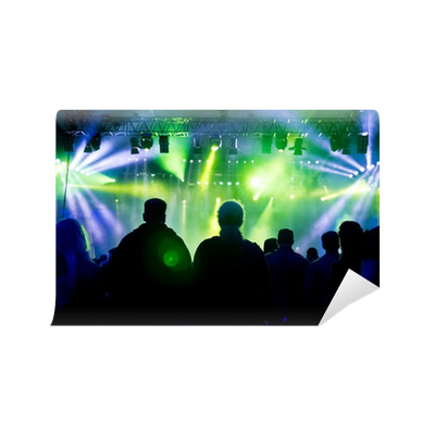 Concert crowd wall mural pixers we live to change for Crowd wall mural