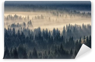 Coniferous forest in the foggy mountains Vinyl Wall Mural