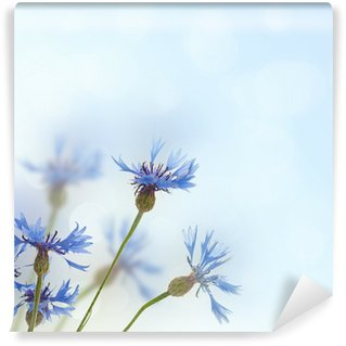 Cornflowers background