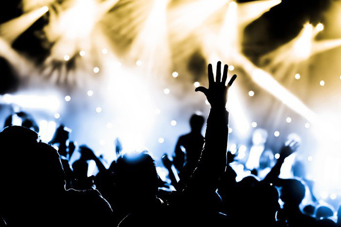 Crowd with hands raised at a live music concert wall mural for Audience wall mural