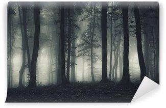 Wall Mural - Vinyl dark forest landscape at night