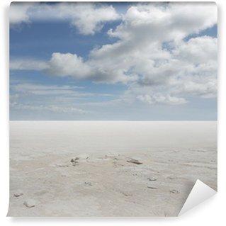 desert Wall Mural - Vinyl