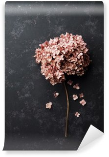 Dried flowers hydrangea on black vintage table top view. Flat lay styling.