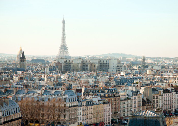 Wall Mural   Vinyl Eiffel Tower And Roofs Of Paris   Themes