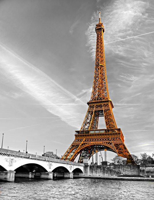 Wall Mural   Vinyl Eiffel Tower, Paris.