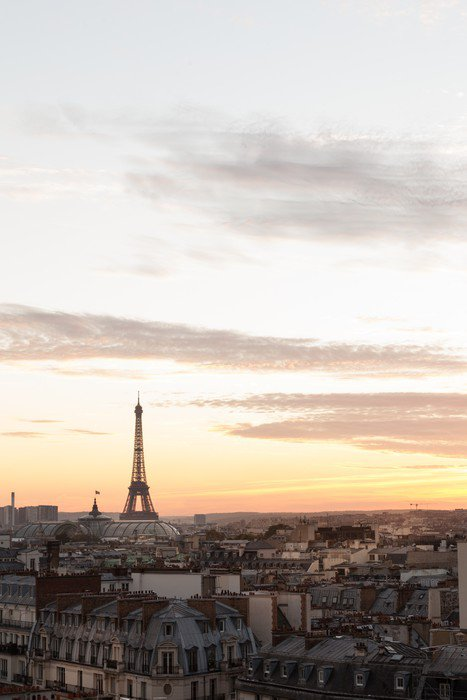Wall Mural   Vinyl Eiffel Tower, PAris   Themes
