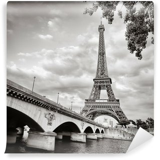 Eiffel tower view from Seine river square format Wall Mural - Vinyl